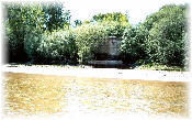 Foto 34-Puente Alberche-Pilar